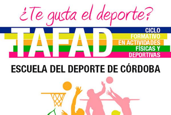 Ciclo formativo en actividades físicas y deportivas